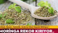 """TIP DÜNYASININ MUCIZESİ"""" MORİNGA TÜRKİYE'DE ARTIK."""